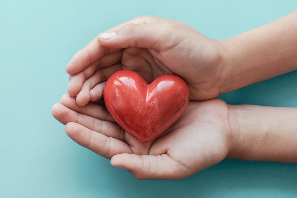 Hands-heart-01_Stichting-Herbahortus